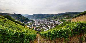 winzerlounge_rotweinwanderweg