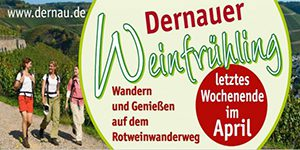 winzerlounge_weinfruehling_dernau_2